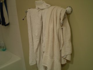 The infamous towel rack